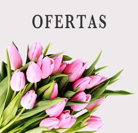 Ofertas en flor cortada Riquelflor